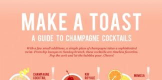 A Guide to Champaigne Cocktails Infographic